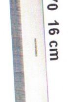 Special Seal Crest Original ROMI tool furrier Accessories