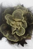 Luxus echt Pelz Brosche Anstecker Blaufuchs Fuchs Olivgrün