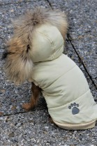 Fur coat luxury fur for dogs fur coat New Finraccoon
