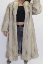 Fur coat blue fox nature