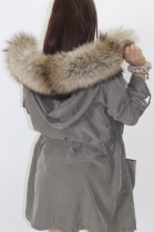 Fur - fur stripes Finnraccoon nature