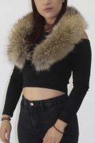 Fur collar Finnraccoon nature